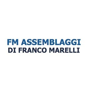 logo F.M.Assemblaggi di Marelli Franco