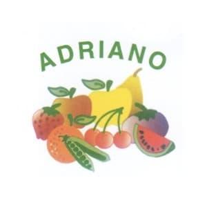 logo Adriano Srl