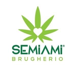 logo Semi-Ami Brugherio