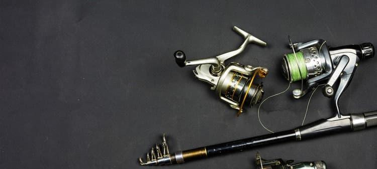 categoria azienda Esca & Pesca