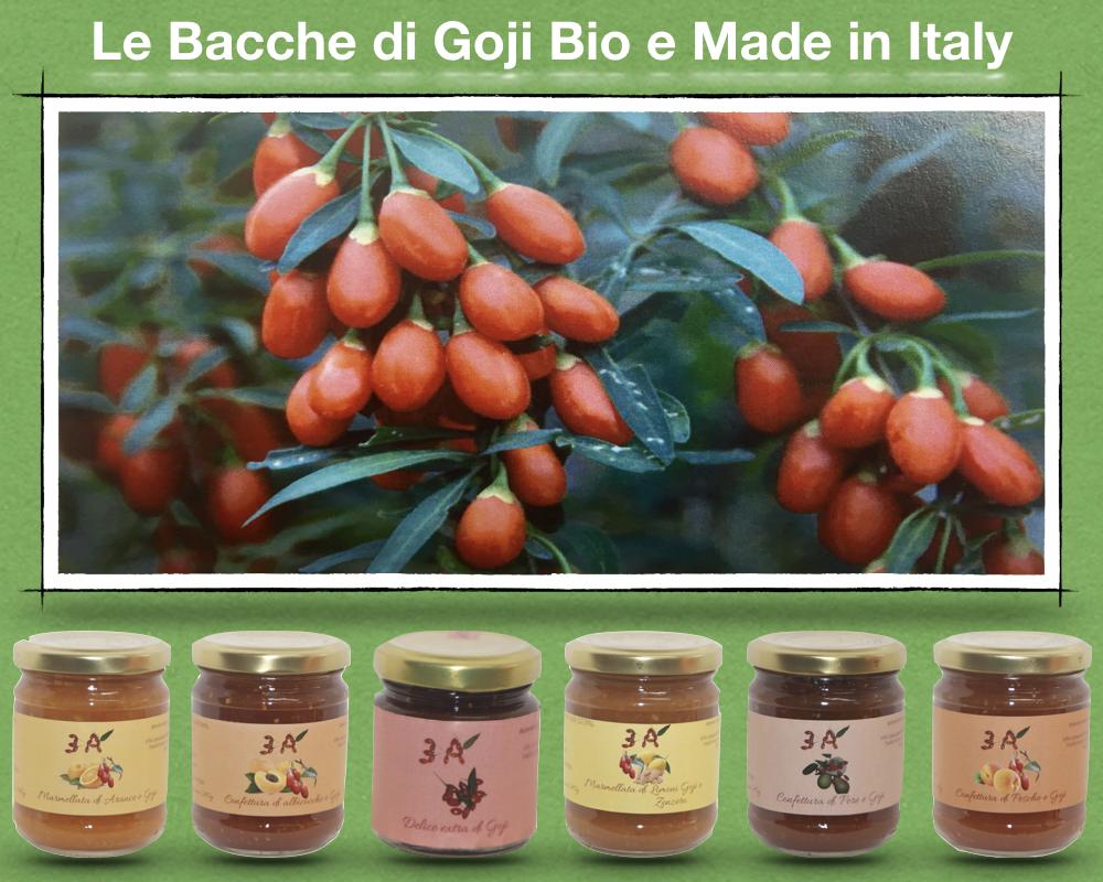LE BACCHE DI GOJI BIO MADE IN ITALY - https://www.lireshopping.com/shop/azienda-agricola-3a-amore-ambiente-agricoltura?flag=1