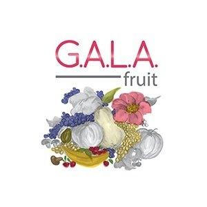 logo Gala Fruit Srl