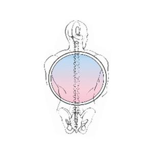 logo Studio di Bioterapia