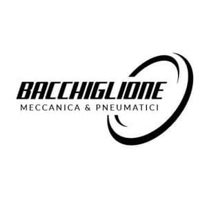 logo Pneumatici Bacchiglione S.r.l.