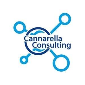 logo Cannarella Consulting