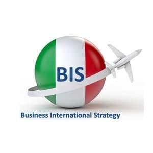 logo BIS.net