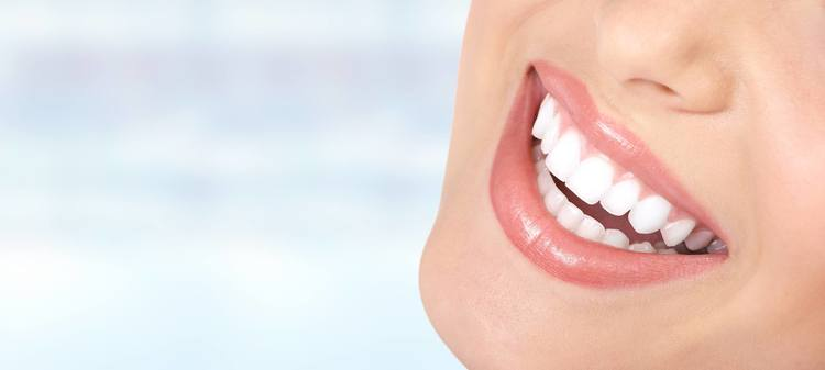 categoria azienda Ambulatorio Odontoiatrico Oleggini