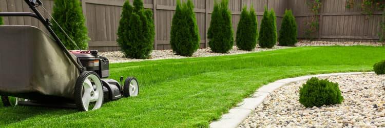categoria azienda Green House Giardini